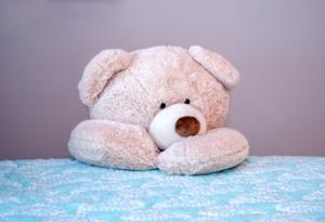 riesen teddy verschenken